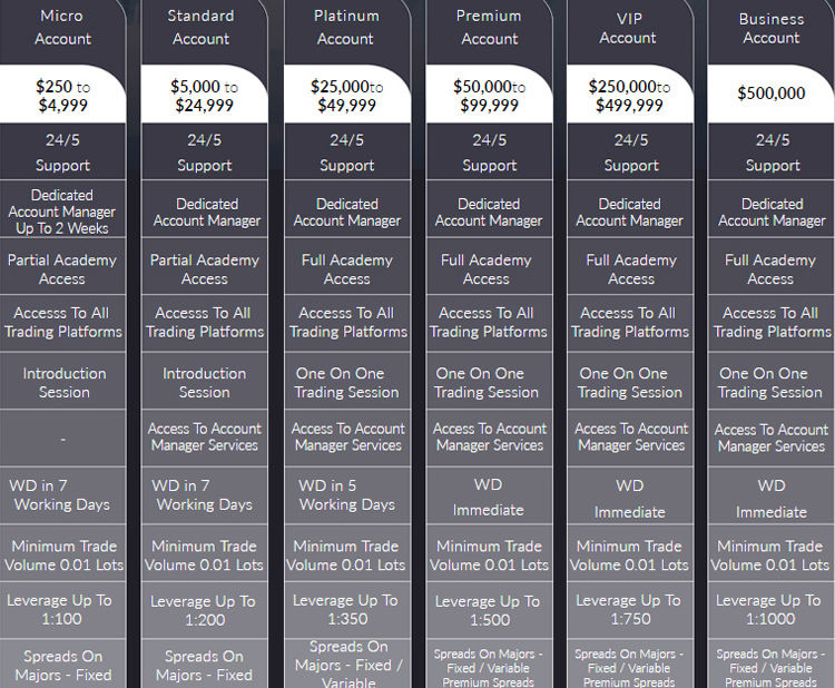 Bitcoin Tirgotāja Pārskats, Cryptocurrency tirdzniecības platforma