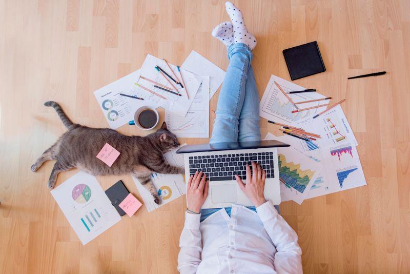 darbs pie interneta ienākumiem mājās Interneta ieņēmumu statistika